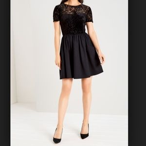 Jack Wills Pembridge Devour Black Mesh Tea Dress
